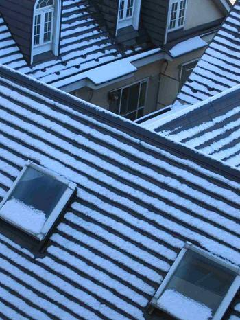 IMG_0886_snow.JPG